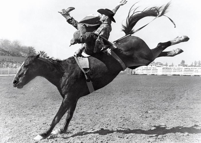 riding-a-bucking-bronco-underwood-archives